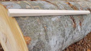 Buche Leiste gehobelt 28x28 mm